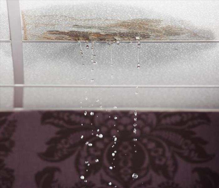 Water Damage Look Out For Water Damage In Your Citrus Heights Home