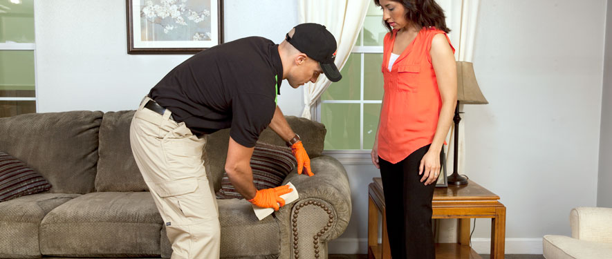 Citrus Heights, CA carpet upholstery cleaning