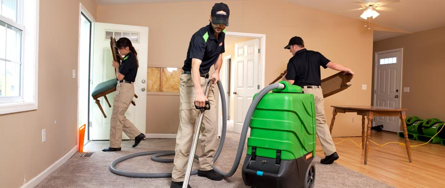 Citrus Heights, CA cleaning services